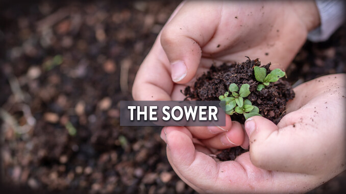 Short Stories, Big Lessons: The Sower