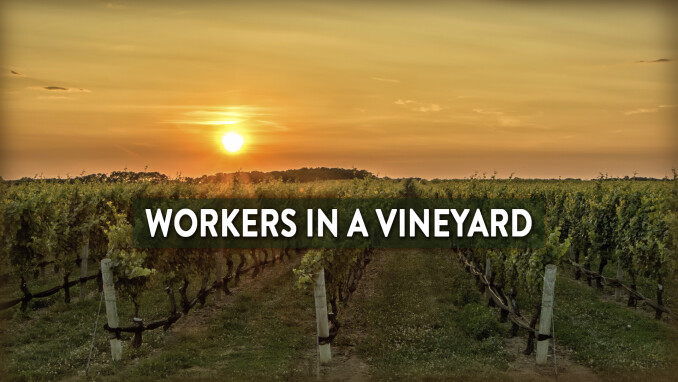 Short Stories, Big Lessons: Workers in the Vineyard