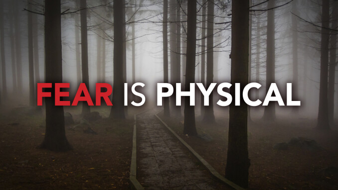 On Fears and Faith: Physical Fear